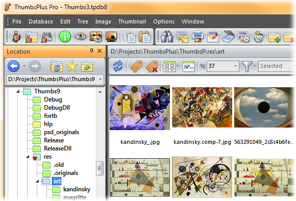 ThumbsPlus Pro 9.0 Build 3926 图形编辑管理