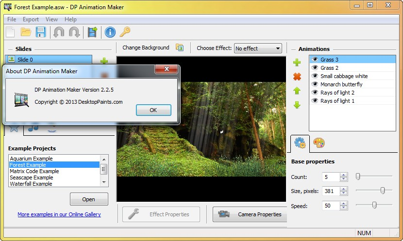 DP Animation Maker 2.2.5