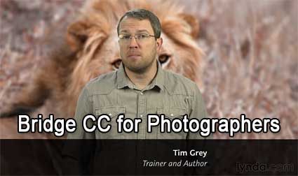 Bridge CC for Photographers
