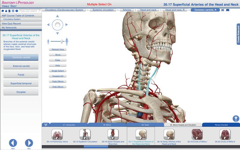 Visible Body Anatomy and Physiology v1.2.8 Mac OS X