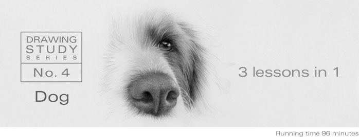 5 Pencil Methos - DRAWING STUDY NO.4: DOG