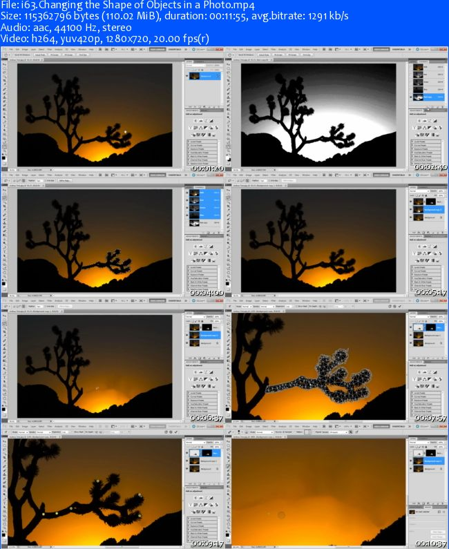 Peachpit Press - Photography Techniques with Adobe Photoshop CS5 Learn by Video