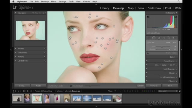 Lightroom 5 Essentials 04 Develop Module Advanced Techniques (2013) [repost]