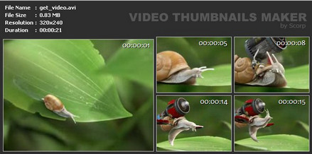 SUU Design Video Thumbnails Maker 6.0.0.0 Platinum