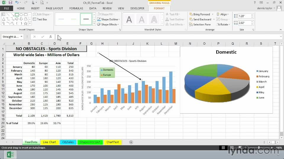 Excel 2013: Charts in Depth