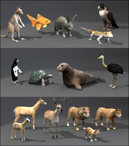 Unity 3D beasts & Animals