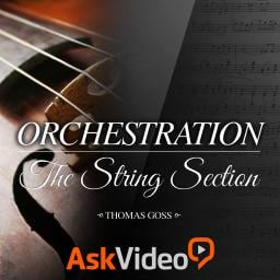 Ask Video Orchestration 101: The String Section (2014)