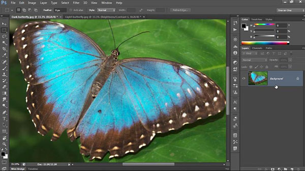 Lynda - Photoshop CC One-on-One: Fundamentals (Updated Sep 17, 2014)