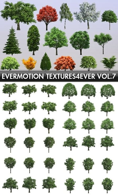 Evermotion Textures4ever vol 7