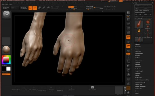 ZBrushworkshops - Fundamentals Of Anatomy Arm And Leg
