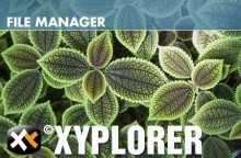 XYplorer 16.80.0000 Multilingual + Portable