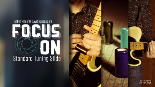 Truefire - David Hamburger's Focus On: Standard Tuning Slide (2015)