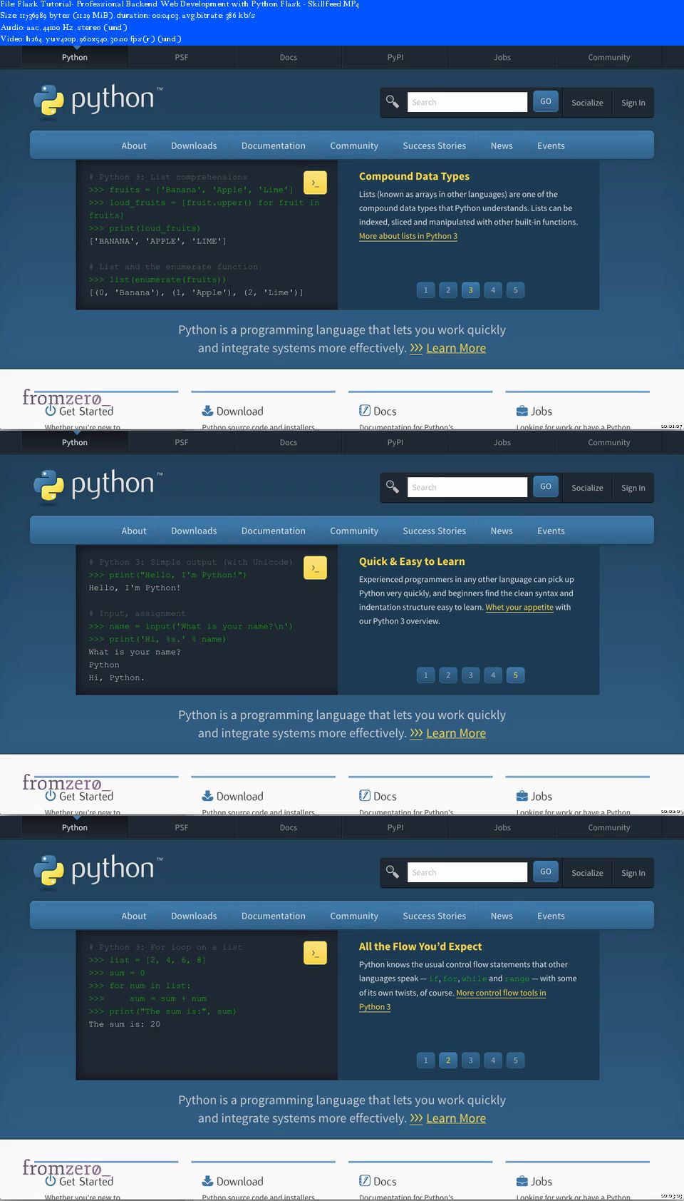 Professional Backend Web Development with Python Flask