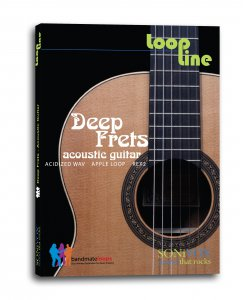 Bandmates Deep Frets Acoustic Guitar MULTiFORMAT SCD-AMPLiFYiSO screenshot