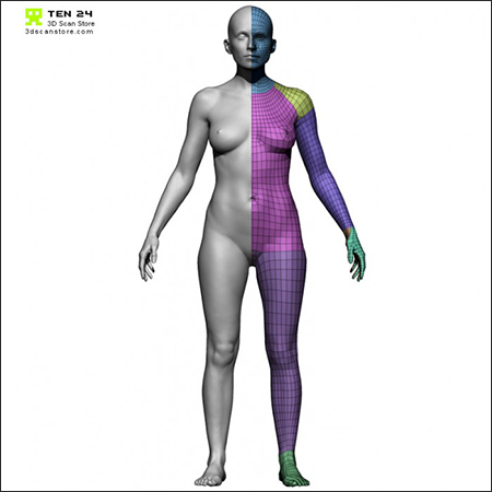 3D Scan Store Female Base Mesh