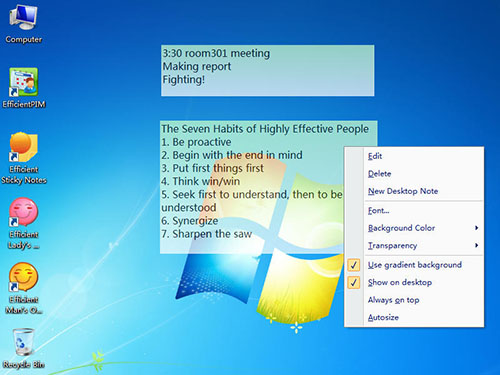 Efficient Sticky Notes Pro 5.0.505 Multilingual + Portable