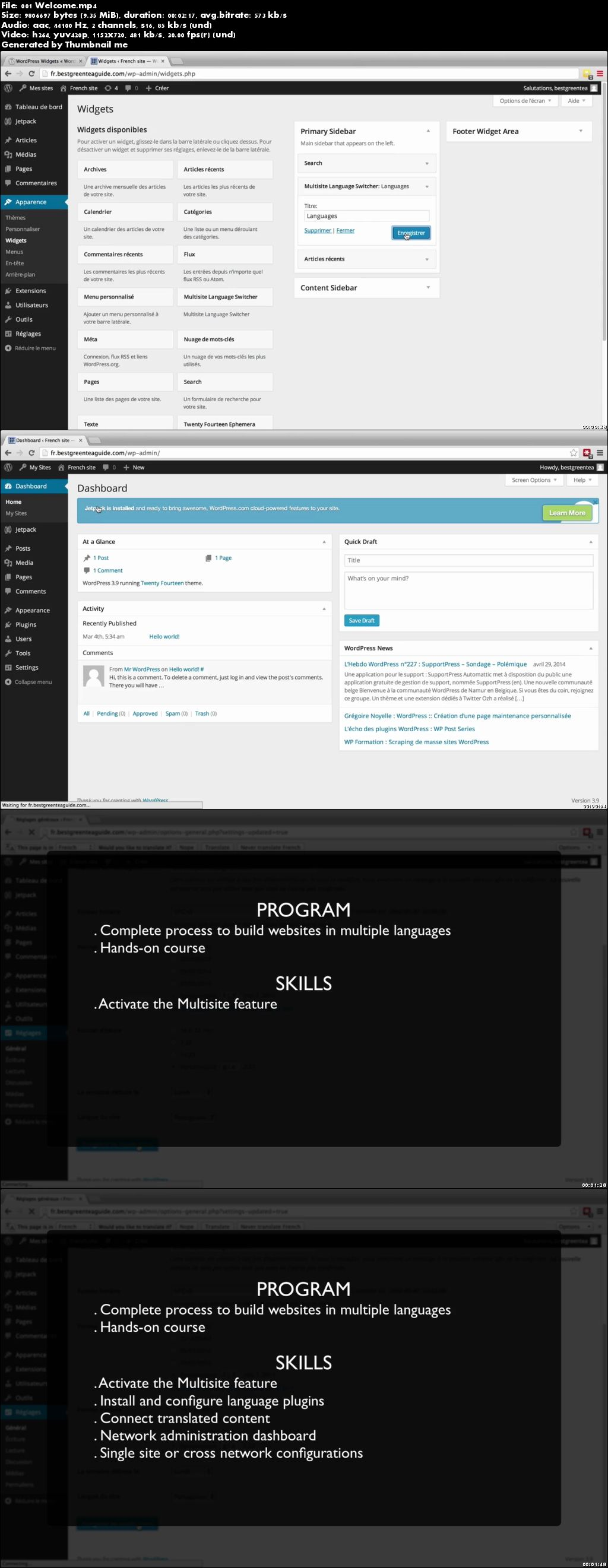Create Multilingual Websites using WordPress