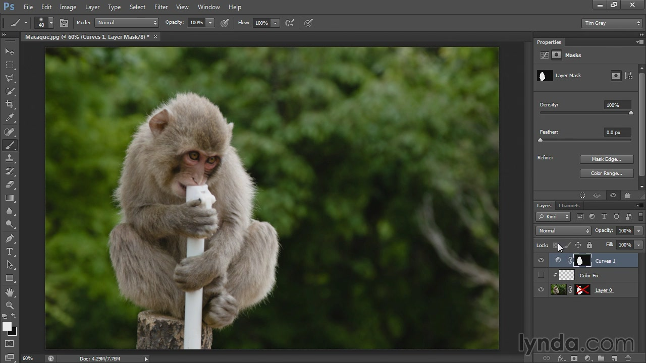Lynda - Photoshop CS6 Selections and Layer Masking Workshop