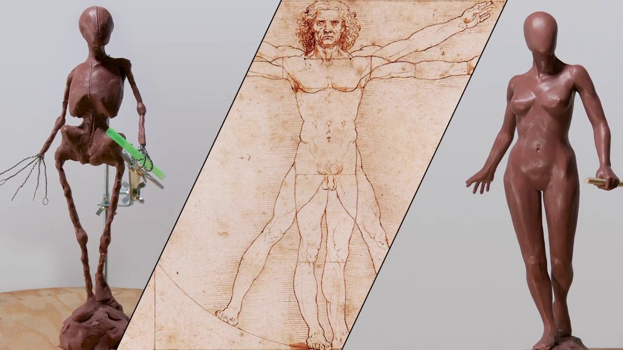 Introduction to Human Anatomy and Basic Proportions