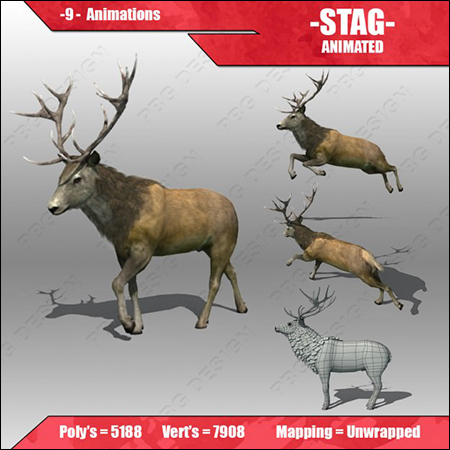 Stag Animated 3D model