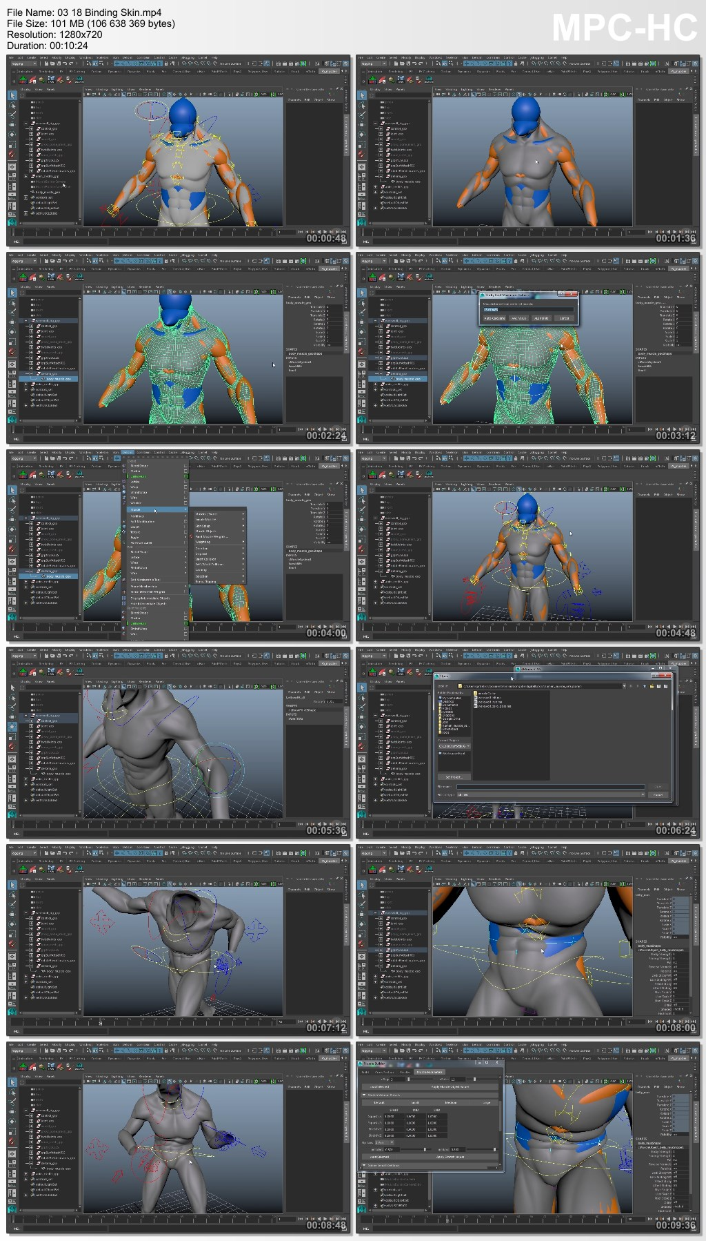 Exploring Human Muscles Setup in Maya