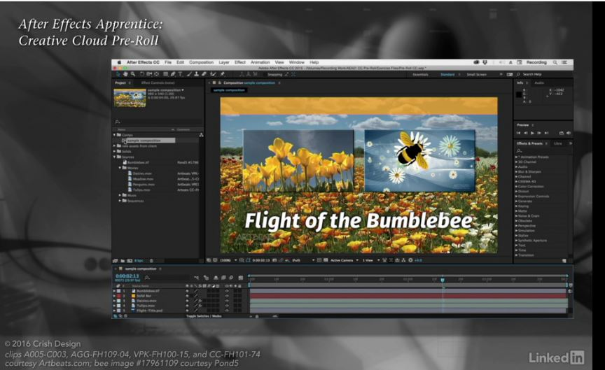 Lynda - After Effects Apprentice 01: CC Pre-Roll
