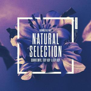 Loopmasters Natural Selection Ableton LiVE