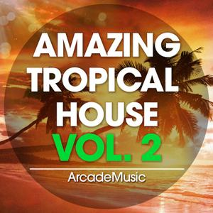 ArcadeMusic Amazing Tropical House Vol 2 WAV MiDi