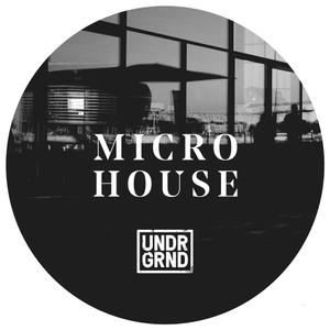 Undrgrnd Sounds Micro House WAV REX AiFF