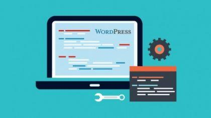 WordPress plugin development & marketing WordPress plugins (2016)