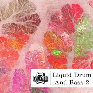 Rankin Audio Liquid Drum and Bass 2 WAV