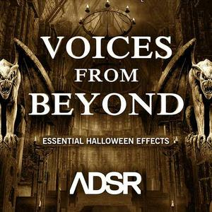 ADSR Sounds Voices From Beyond WAV AiFF