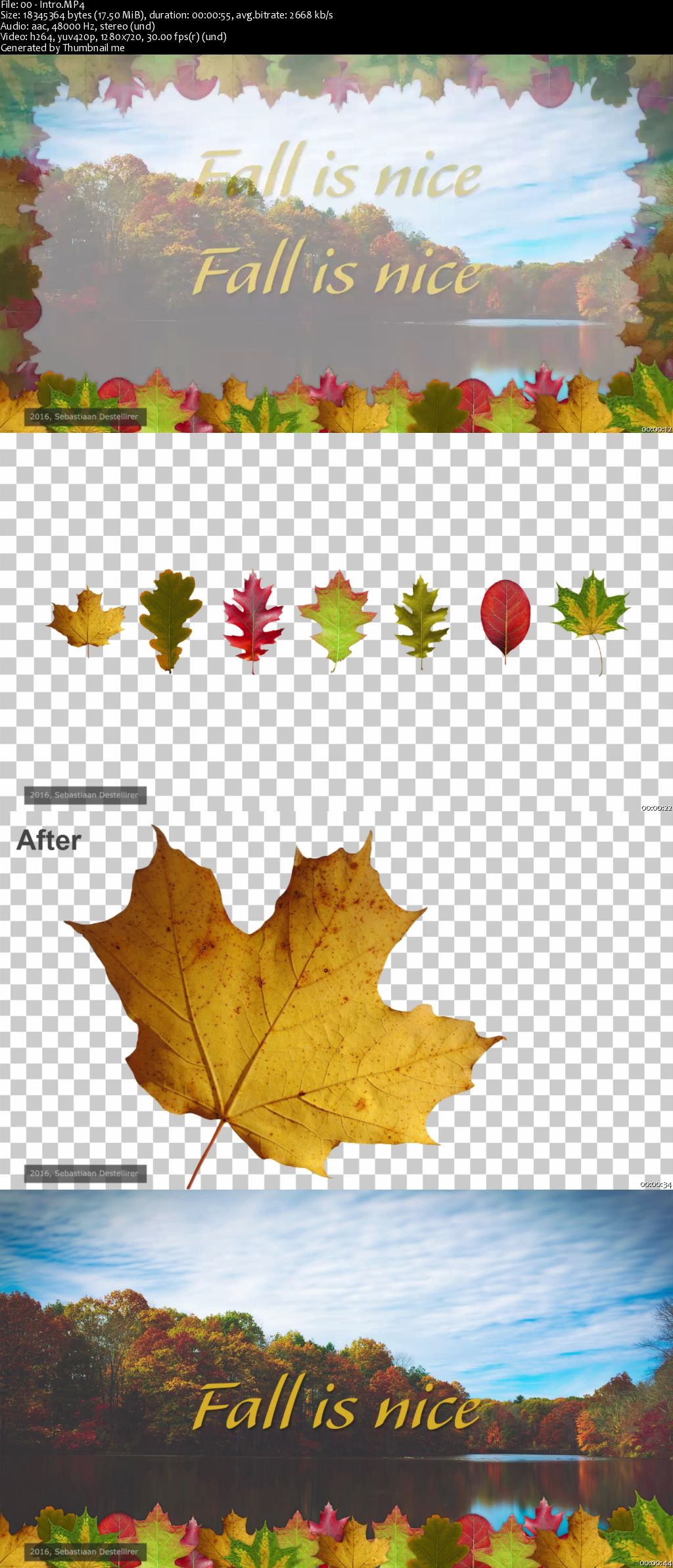 Capture the Fall - Create your own Fall Themed Picture borders in Adobe Photoshop