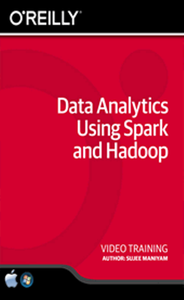 Data Analytics Using Spark and Hadoop