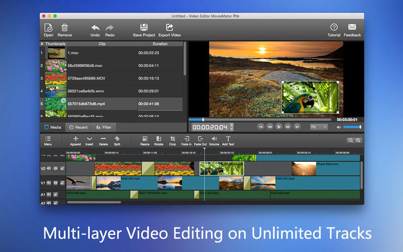 Video Editor MovieMator Pro 2.2.3 Mac OS X