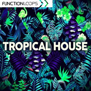 Function Loops Tropical House WAV MiDi SPiRE MASSiVE LiVE