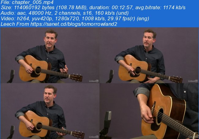 Acoustic Guitar Lessons: 1 Picking, Fretting, & Chords